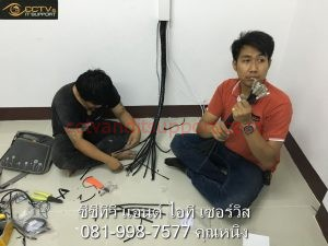 IMG_9456